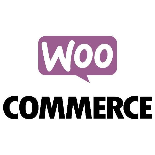 Liaison logiciel de caisse / WooCommerce (Wordpress)